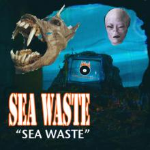 The SEA WASTE Saga